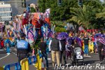 carnival_in_santa-cruz-de-tenerife_2019_13.jpg