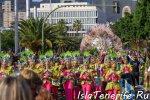 carnival_in_santa-cruz-de-tenerife_2019_16.jpg