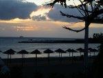 playa_de_las_americas_tenerife_14.jpg